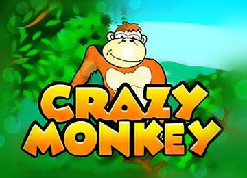 игровые автоматы обезьянки crazy monkey slot